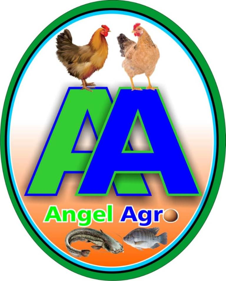 ANGEL-AGRO